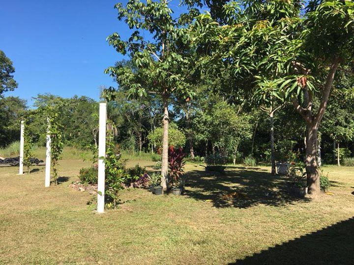 Chácara Sítio  no Pedra 90, Cuiabá  - MT