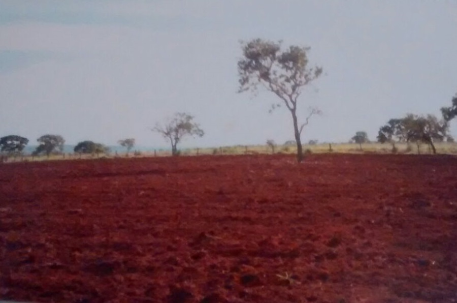 Fazenda  no Zona Rural , Canarana  - MT