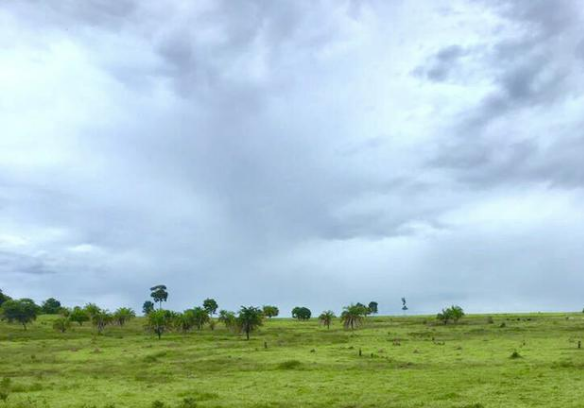 Fazenda  no Zona Rural , Canabrava do Norte  - MT