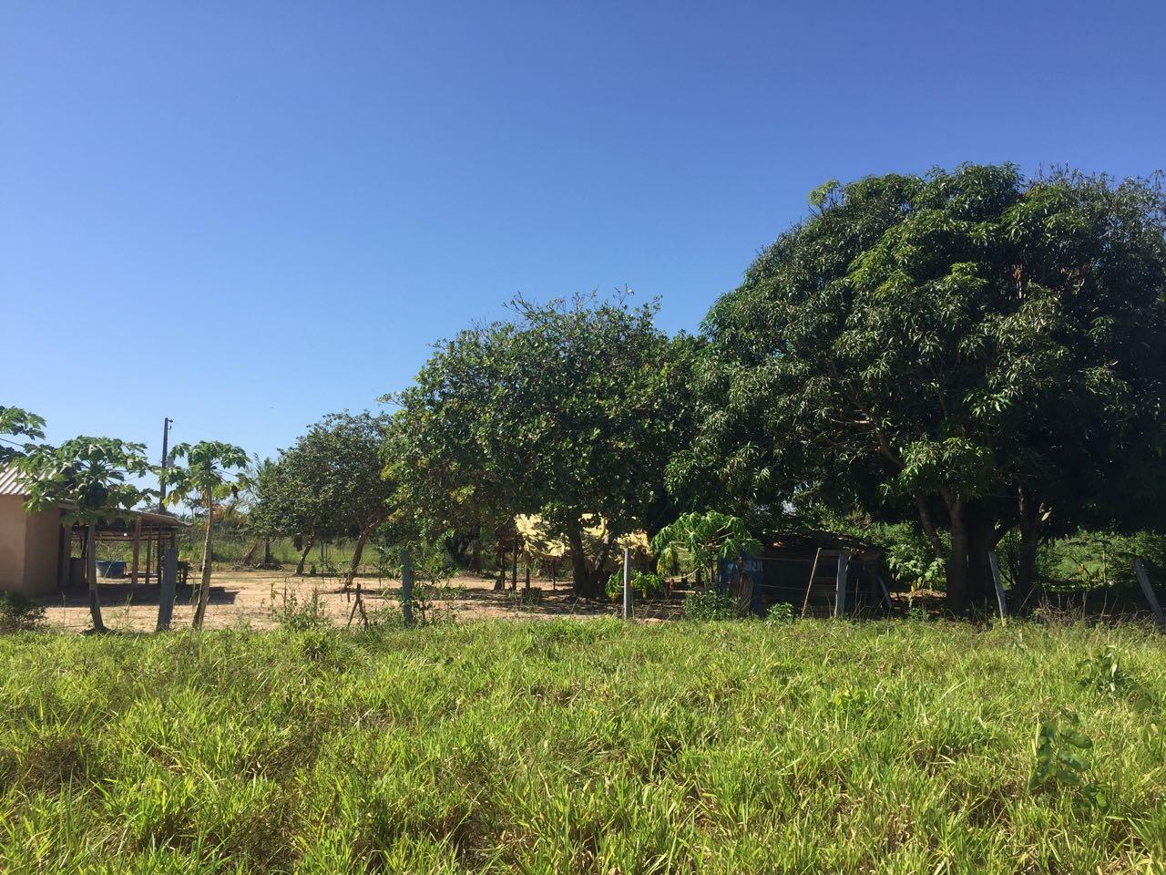 Chácara Sítio  no Zona Rural , Nobres  - MT