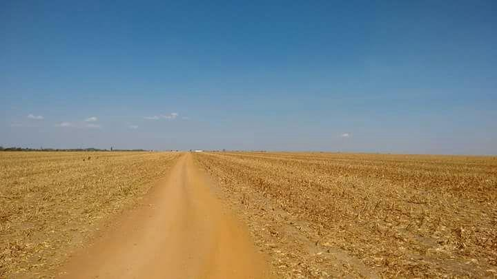 Fazenda  Norte Mato Grosso  - MT