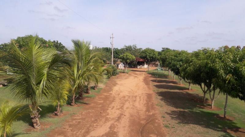 Chácara Sítio  Lucas do Rio Verde  - MT