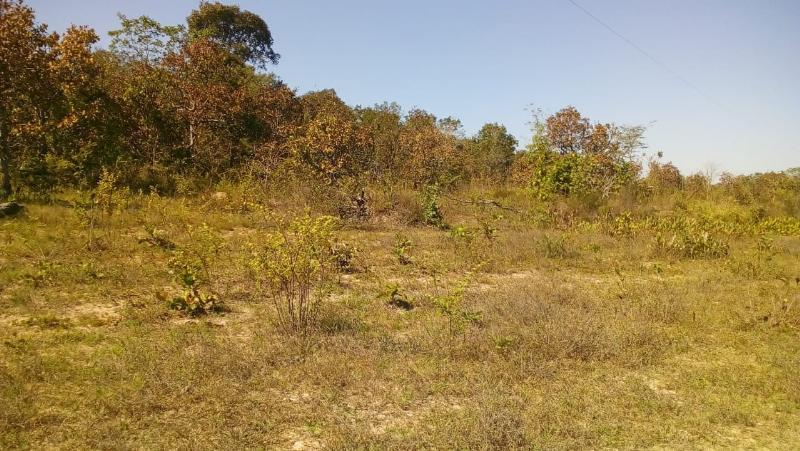 Área Rural  Cuiabá  - MT