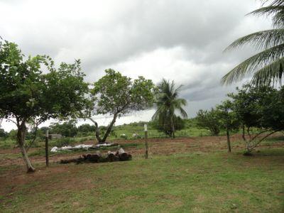 http://www.imoveltop.com.br/imagens/imovel/93/00216/20130114_171410_249680.jpg